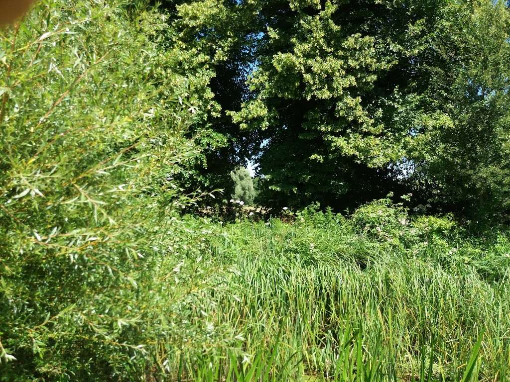 Deer Park - park  | Photo 3 of 10 | Address: 17 Tallents Cl, Sutton at Hone, Dartford DA4 9HS, UK