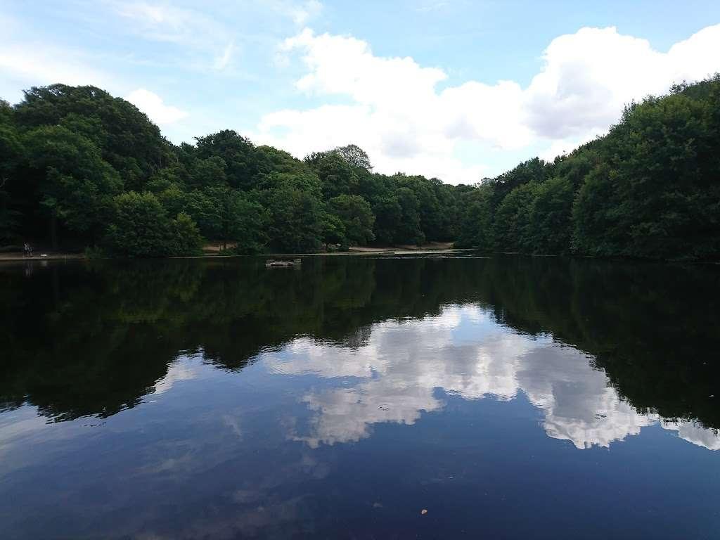 Queensmere Pond, Wimbledon Common - park  | Photo 6 of 10 | Address: Windmill Rd, Wimbledon, London SW19 5NR, UK | Phone: 020 8788 7655