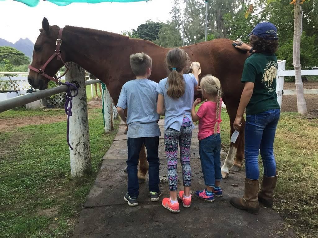 Hawaii Polo Lessons - travel agency  | Photo 8 of 8 | Address: 41-1062 Kalanianaʻole Hwy, Waimanalo, HI 96795, USA | Phone: (808) 421-9874