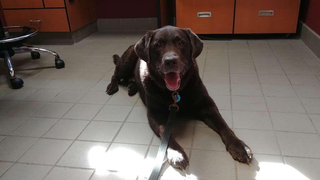 Garden State Veterinary Specialists Veterinary Care 1
