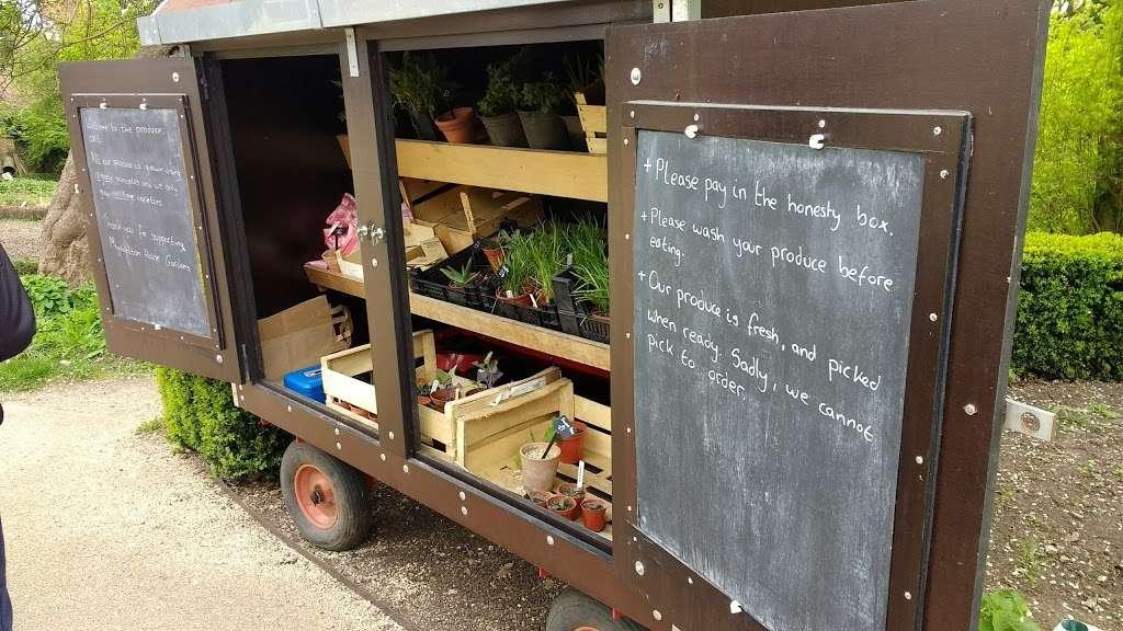 Myddelton House Gardens - cafe  | Photo 4 of 10 | Address: Bulls Cross, Enfield EN2 9HG, UK | Phone: 0300 003 0610
