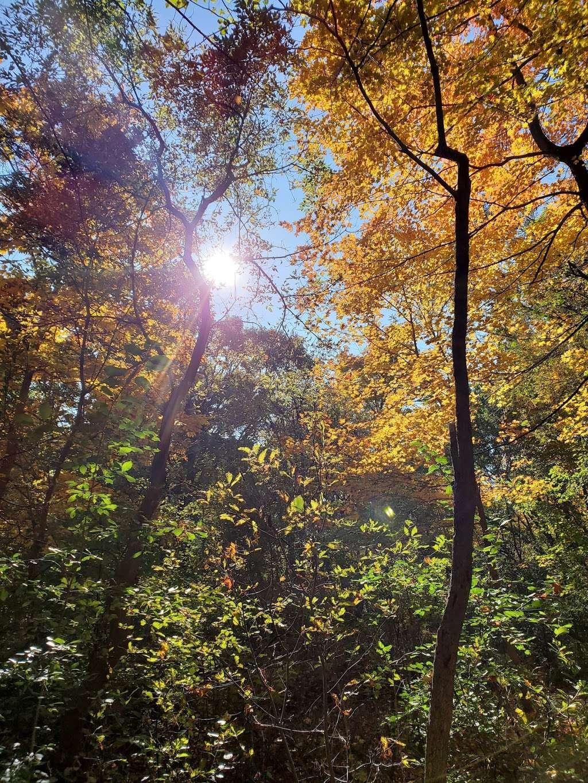 Kinnickinnic River Parkway - park  | Photo 6 of 10 | Address: W Rita Dr, Milwaukee, WI 53219, USA | Phone: (414) 643-0120