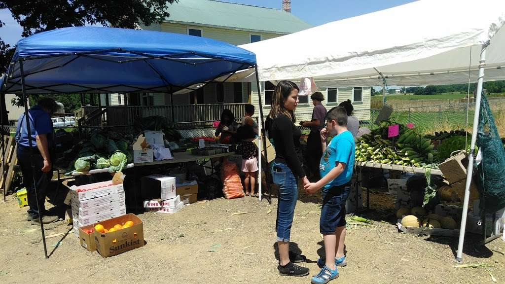 Amish meat John Wye - store  | Photo 10 of 10 | Address: 37404 Westham Ln, Mechanicsville, MD 20659, USA | Phone: (240) 707-1269