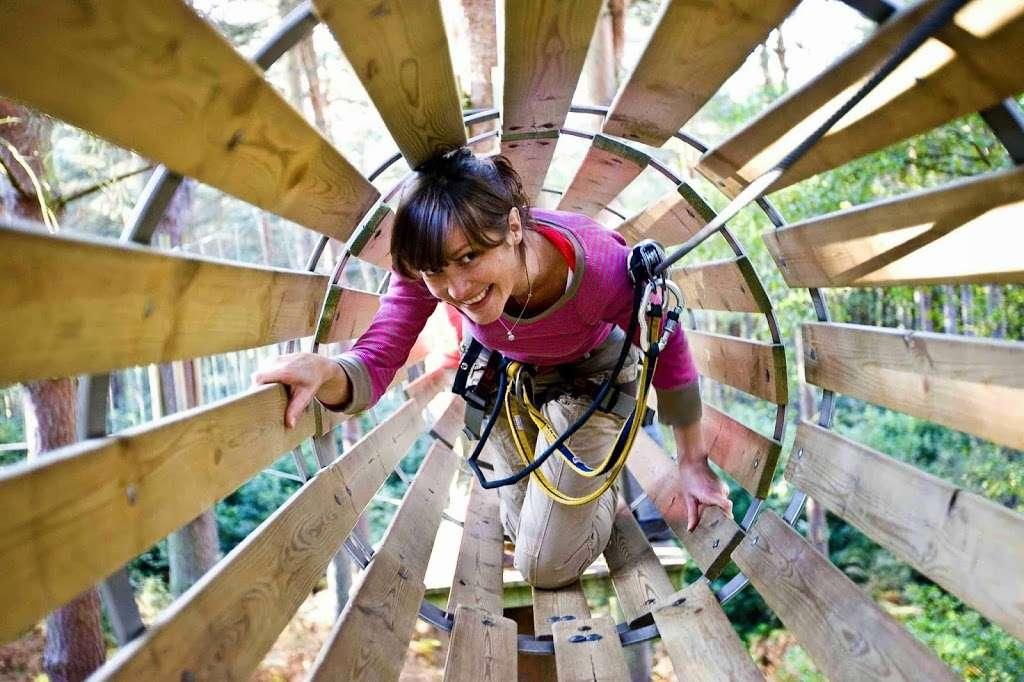 Go Ape Zip Line Treetop Adventure Eagle Creek Park 5855 Delong Rd Indianapolis In 46254 Usa