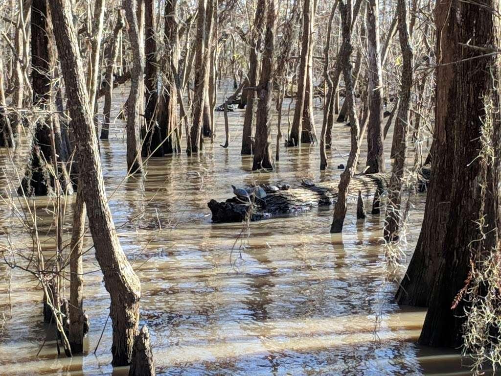 Anahuac National Wildlife Refuge Visitor Center - travel agency  | Photo 3 of 10 | Address: 4017 FM563, Wallisville, TX 77597, USA | Phone: (409) 267-3337
