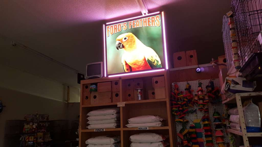 Fords Feathers - pet store  | Photo 5 of 10 | Address: 1532 W Carson St, Torrance, CA 90501, USA | Phone: (310) 212-5903