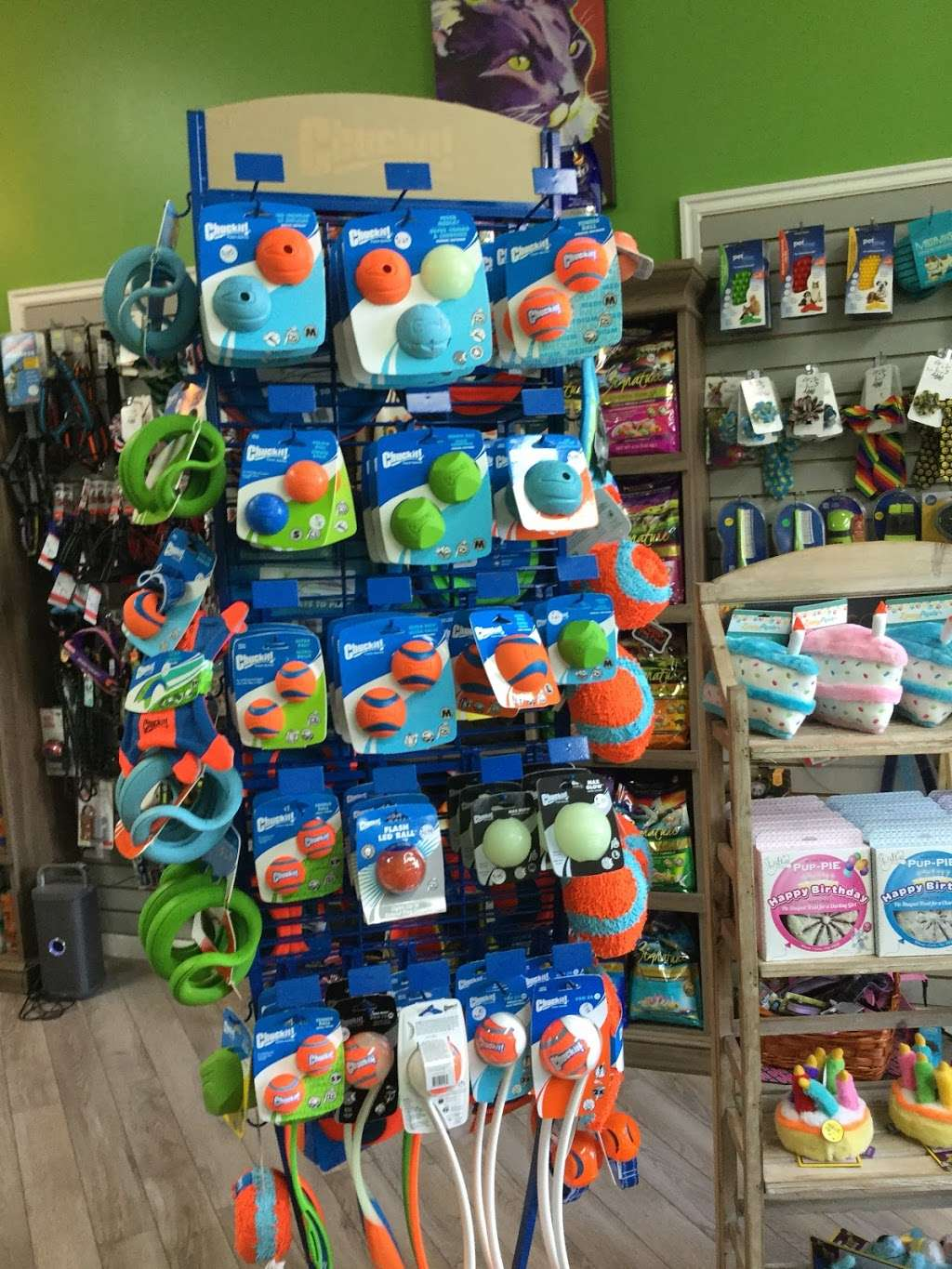 Bark And Purr Yonkers - clothing store    Photo 8 of 10   Address: 1 Pierpointe St, Yonkers, NY 10701, USA   Phone: (914) 476-2275