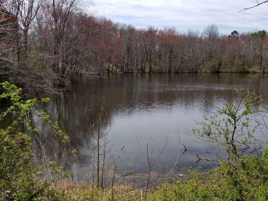 Liberty Park II - park  | Photo 3 of 10 | Address: 1400 W Park Ave, Tinton Falls, NJ 07712, USA | Phone: (732) 542-3400