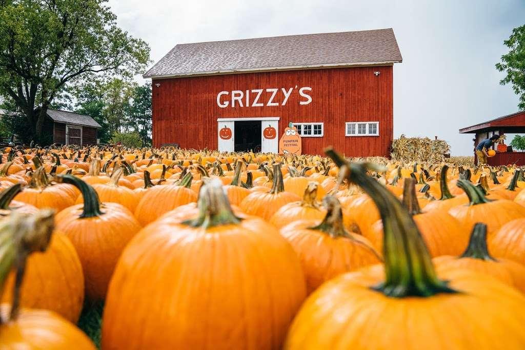 Grizzy's Pumpkins - store    Photo 5 of 10   Address: Marengo, IL 60152, USA