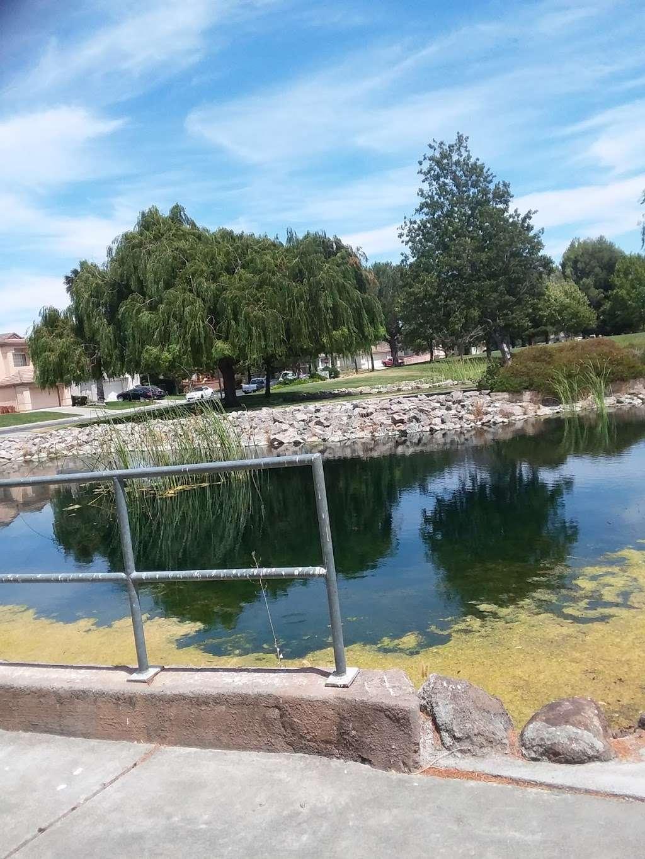 Lawler Falls Park - park    Photo 7 of 10   Address: 1401 Hammond Ln, Suisun City, CA 94585, USA