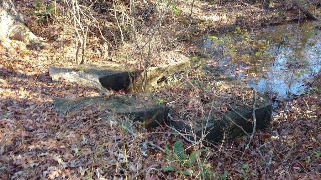 Severn Run NEA Trails - park  | Photo 3 of 8 | Address: 1027-1055 Dicus Mill Rd, Millersville, MD 21108, USA