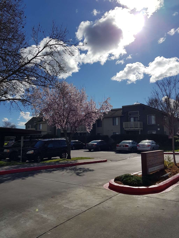 Valley Village - rv park    Photo 1 of 10   Address: 6401 Country Club Dr, Rohnert Park, CA 94928, USA   Phone: (707) 585-2599