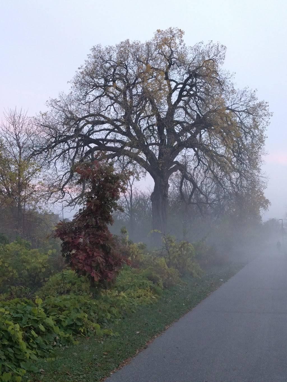 Burr Jones Park - park  | Photo 5 of 9 | Address: 1820 E Washington Ave, Madison, WI 53704, USA | Phone: (608) 266-4711