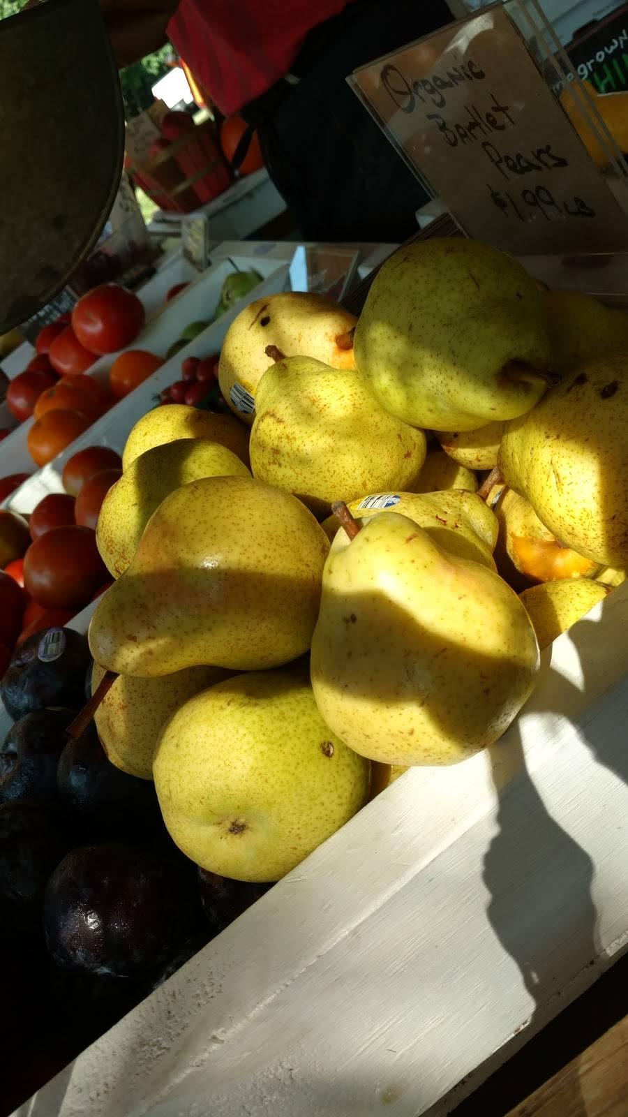 The Citrus Tree - home goods store  | Photo 5 of 8 | Address: 10031 Corbett Rd, Cincinnati, OH 45231, USA | Phone: (513) 313-3638