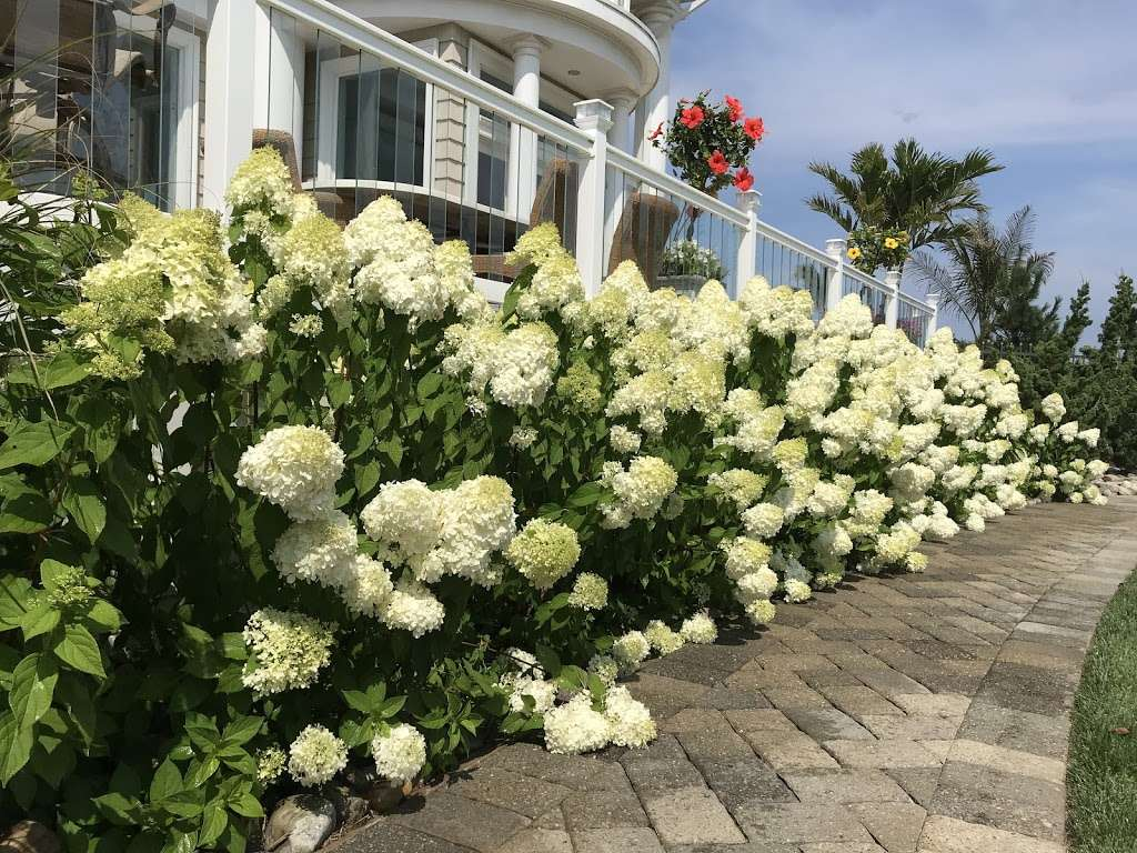 Resort 88 - lodging  | Photo 3 of 10 | Address: 88 Ocean Ave, Monmouth Beach, NJ 07750, USA