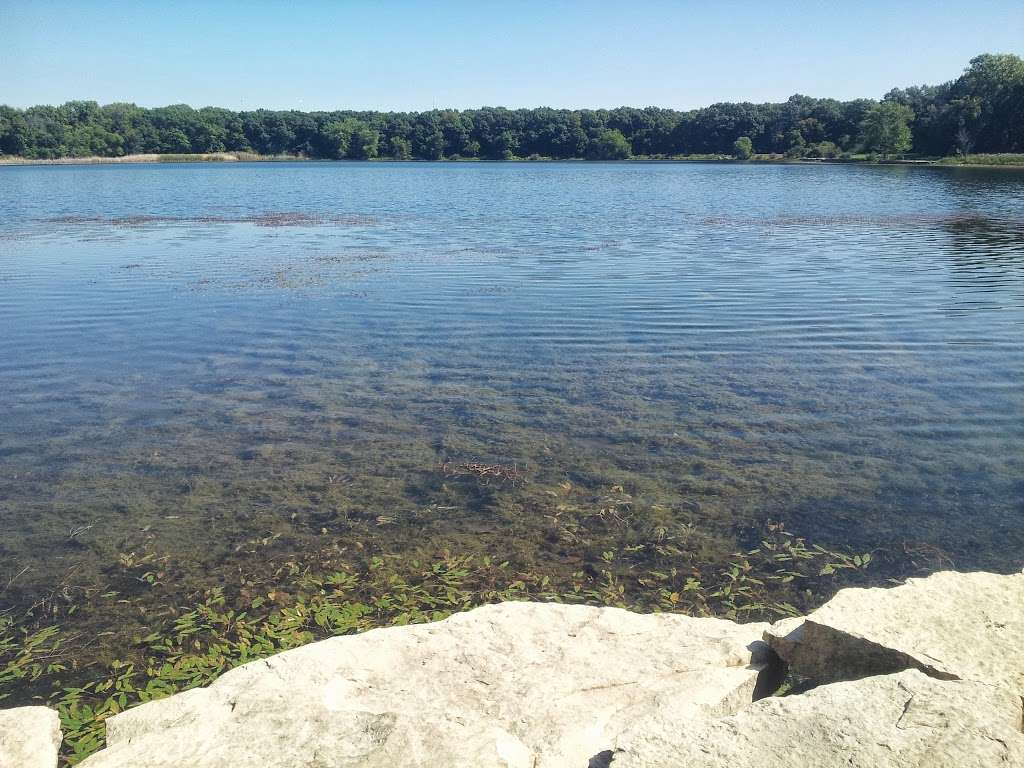 Wampum Lake Woods - park  | Photo 6 of 10 | Address: 598 Thornton Lansing Rd, Thornton, IL 60476, USA | Phone: 0000000000