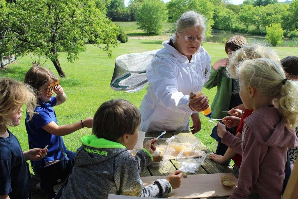 Village Montessori School - school  | Photo 6 of 10 | Address: 33874 Snickersville Turnpike, Bluemont, VA 20135, USA | Phone: (540) 454-7514