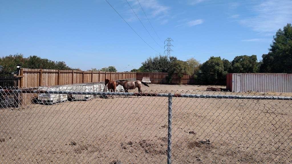 Almondridge Park - park  | Photo 10 of 10 | Address: 3400 Almondridge Dr, Antioch, CA 94509, USA | Phone: (925) 779-6950
