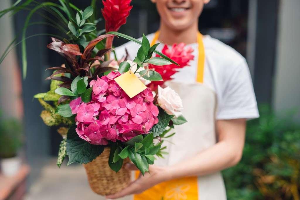 Creative Florist - florist    Photo 7 of 10   Address: 93-01 63rd Dr, Rego Park, NY 11374, USA   Phone: (718) 459-9292