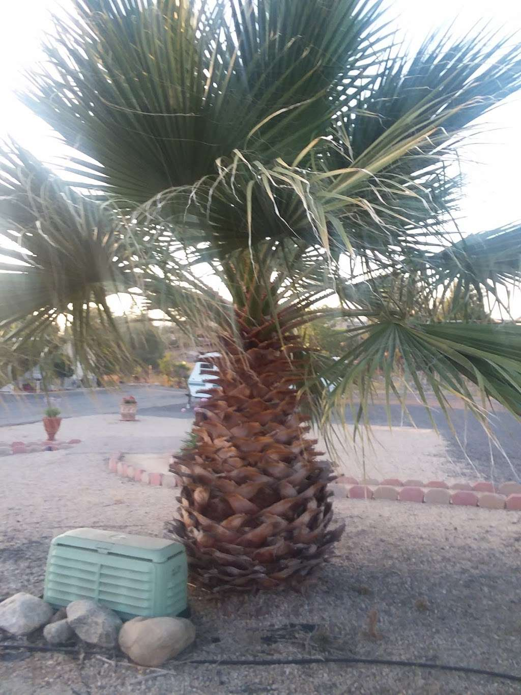 Valley View Mobile Home Park - rv park  | Photo 9 of 10 | Address: 12995 6th St, Yucaipa, CA 92399, USA | Phone: (909) 795-2118