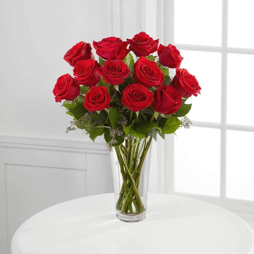 Stobbarts Nurseries Inc - florist    Photo 2 of 10   Address: 444 East Central Street, Franklin, MA 02038, USA   Phone: (508) 528-0800