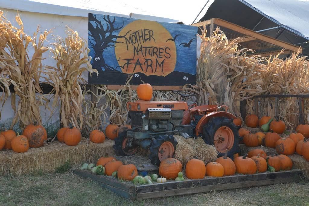Mother Natures Farm - clothing store    Photo 1 of 10   Address: 1663 E Baseline Rd, Gilbert, AZ 85233, USA   Phone: (480) 892-5874