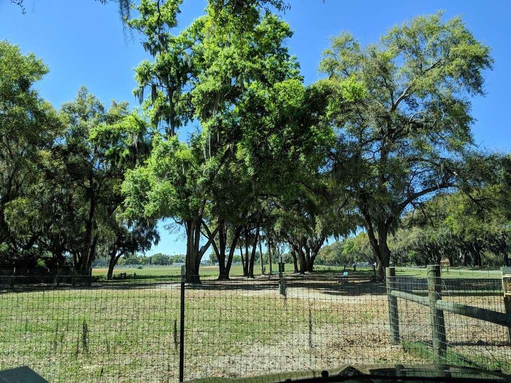 BarkPark of Wildwood - park  | Photo 1 of 10 | Address: 3901-3999 Co Rd 144, Wildwood, FL 34785, USA
