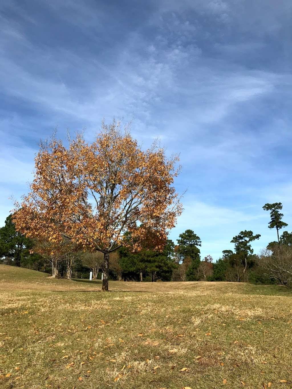 Terramont Park - park  | Photo 8 of 10 | Address: 8500 Terramont Dr, The Woodlands, TX 77382, USA | Phone: (281) 210-3800