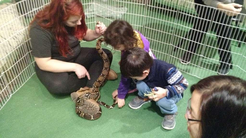 Rizzos Wildlife World - zoo  | Photo 8 of 10 | Address: 1 Gold Mine Rd, Flanders, NJ 07836, USA | Phone: (973) 586-0444