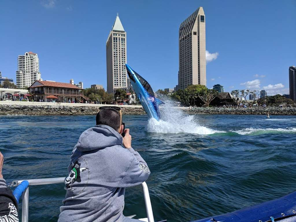 SeaQuest Water Adventures - travel agency  | Photo 2 of 10 | Address: Dock K-M, 955 Harbor Island Dr Gate 4, San Diego, CA 92101, USA | Phone: (844) 669-3483