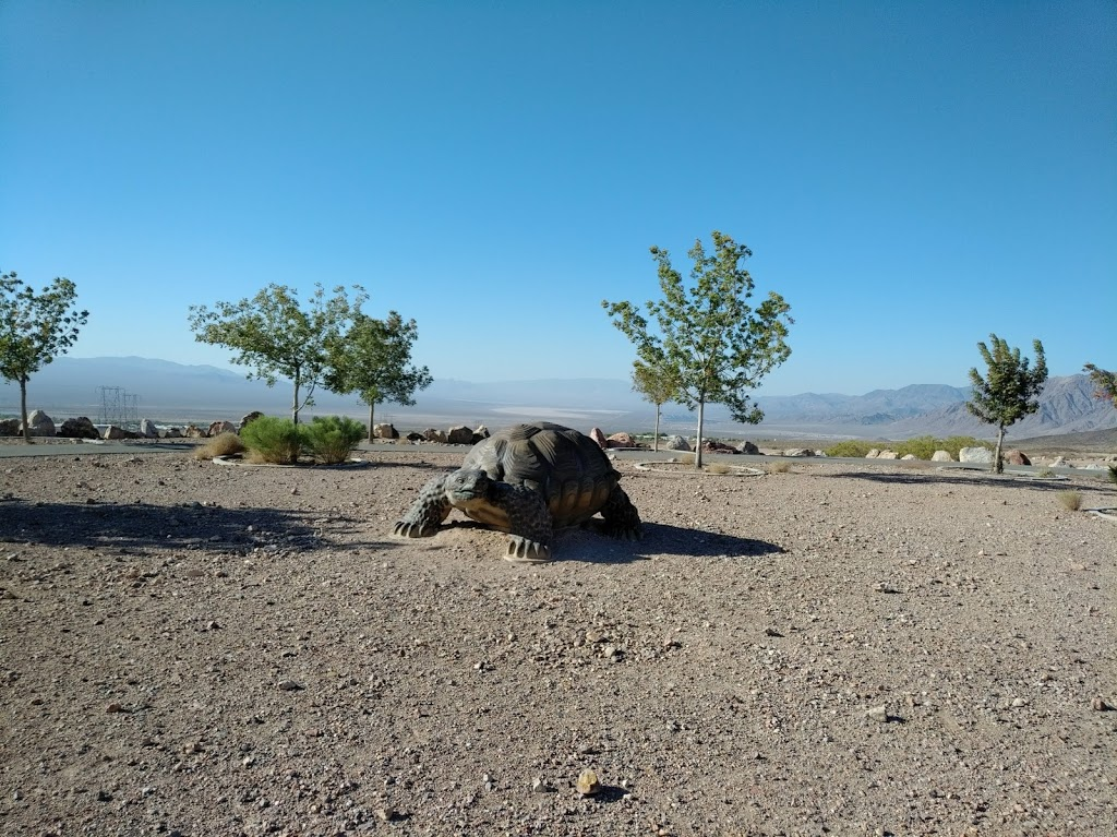 Nature Discovery Trail and Rock Garden - park  | Photo 7 of 10 | Address: Boulder City, NV 89005, USA