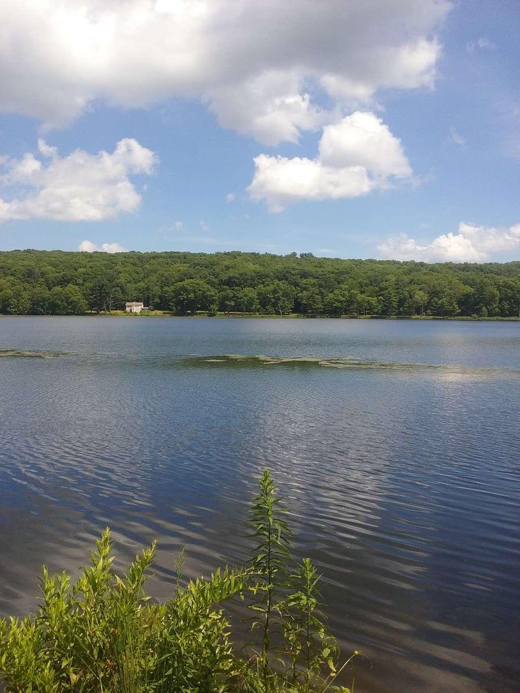 Moon Lake State Forest Recreation Area - park  | Photo 4 of 10 | Address: Hunlock Creek, PA 18621, USA