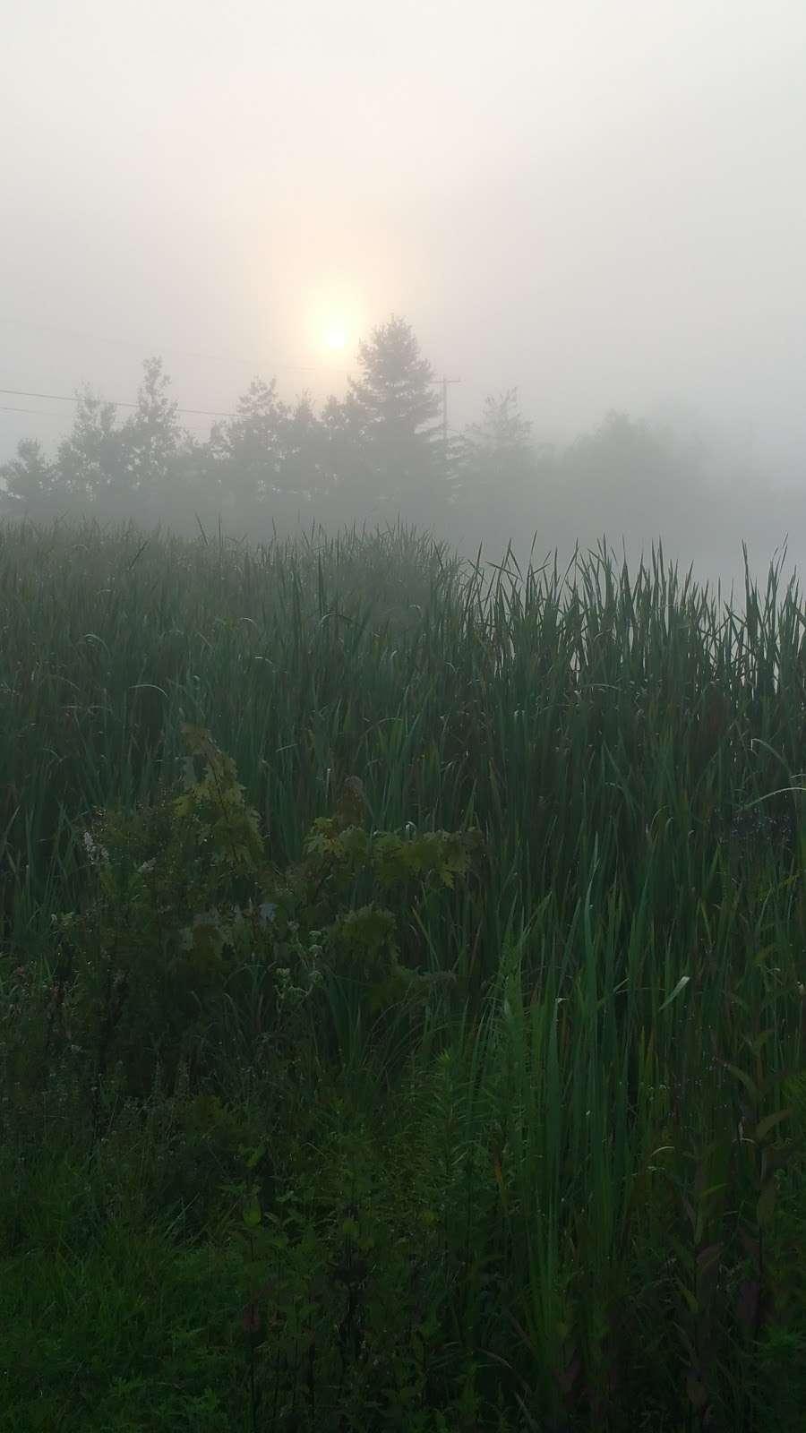 Lake Marie - park  | Photo 6 of 8 | Address: Weatherly, PA 18255, USA