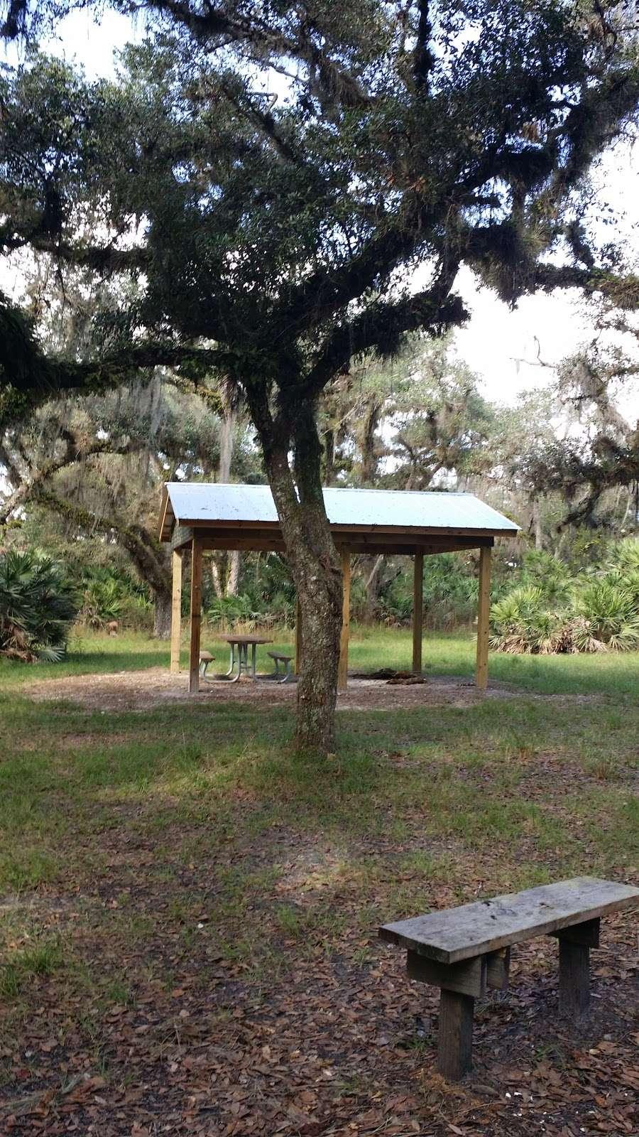 White Loop Group Campsite - campground  | Photo 4 of 5 | Address: Orlando, FL 32833, USA | Phone: (386) 329-4404