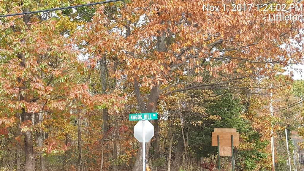 Nagog Hill Orchard - park  | Photo 6 of 10 | Address: 140 Nashoba Rd, Littleton, MA 01460, USA
