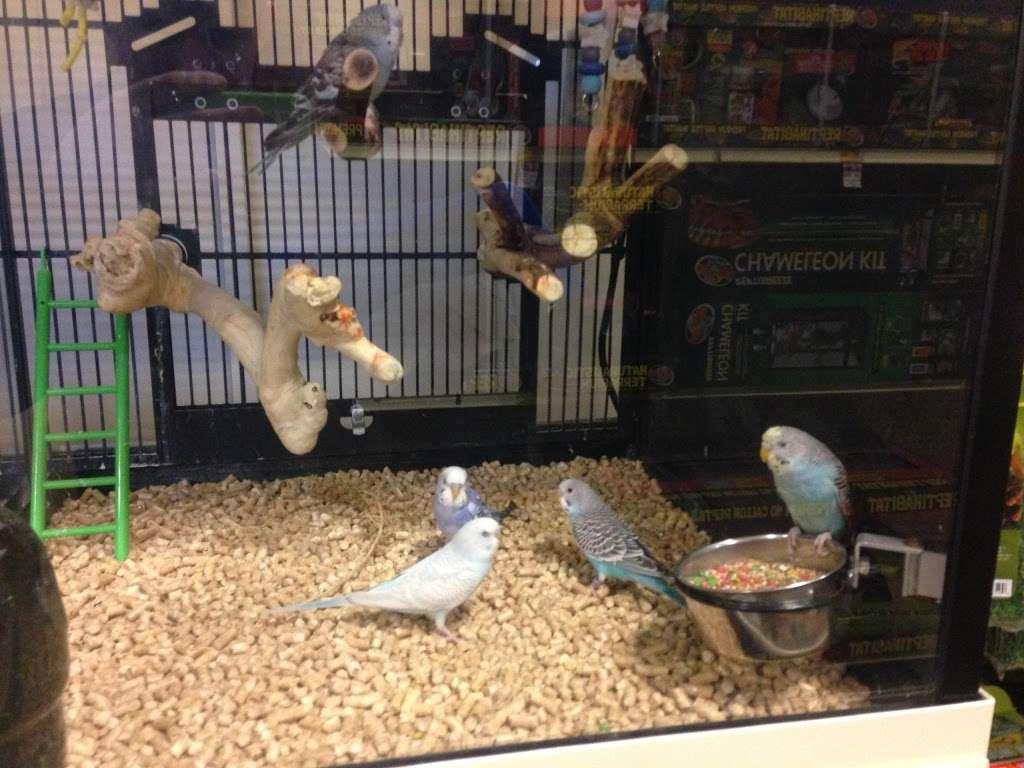 PetSmart - veterinary care  | Photo 9 of 10 | Address: 170 Marketplace Blvd, Hamilton Township, NJ 08691, USA | Phone: (609) 585-4418