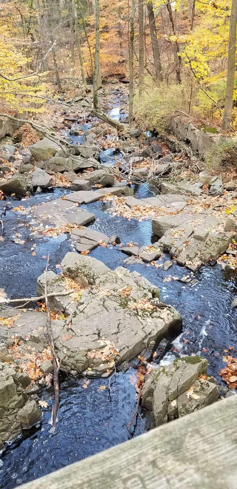 Flat Rock Brook Nature Center - park  | Photo 10 of 10 | Address: 288 Jones Rd, Englewood, NJ 07631, USA