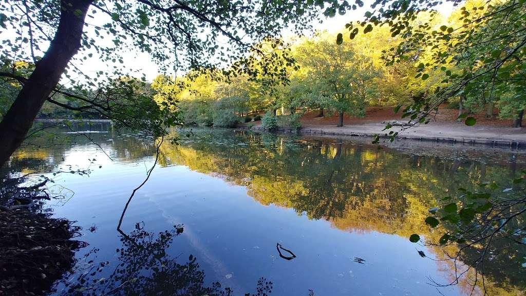 Queensmere Pond, Wimbledon Common - park  | Photo 2 of 10 | Address: Windmill Rd, Wimbledon, London SW19 5NR, UK | Phone: 020 8788 7655