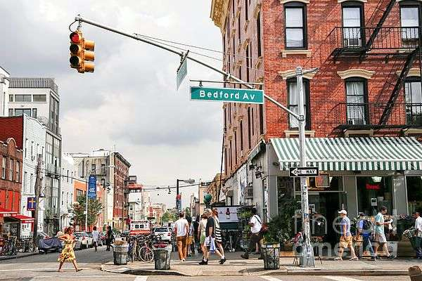 Astorias Best Exterminators - home goods store  | Photo 3 of 10 | Address: 2637 2nd St, Astoria, NY 11102, USA | Phone: (718) 280-9925