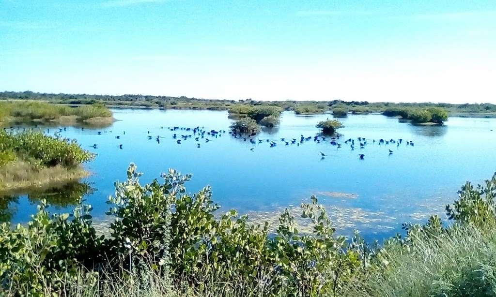 Blackpoint Wildlife Drive Entrance - park  | Photo 5 of 10 | Address: Blackpoint Wildlife Dr, Titusville, FL 32796, USA