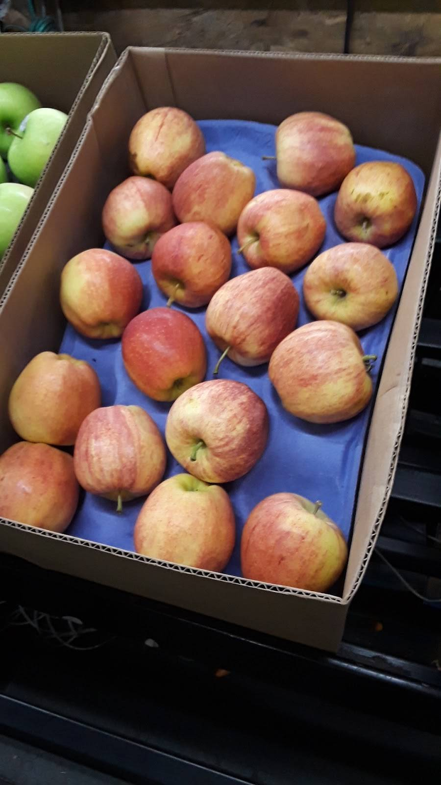 Jalisco Fresh Produce Inc - store  | Photo 4 of 8 | Address: 1601 E Olympic Blvd, Los Angeles, CA 90021, USA | Phone: (213) 629-0993