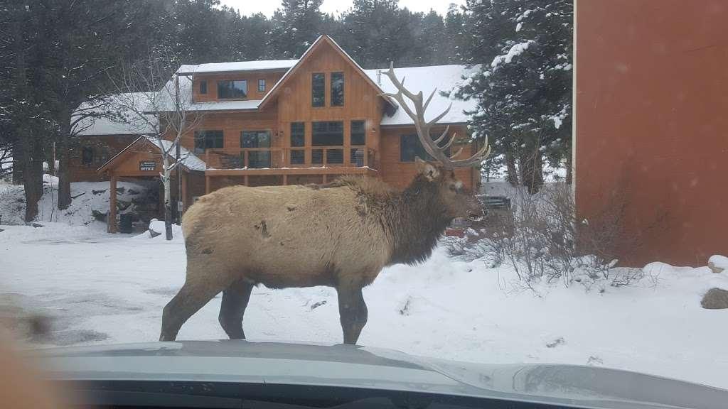 Estes Park Retreat - real estate agency  | Photo 3 of 9 | Address: 1180 Fall River Rd, Estes Park, CO 80517, USA