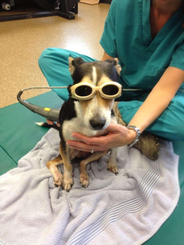 Lake Olympia Animal Hospital - veterinary care  | Photo 6 of 10 | Address: 20413 University Blvd, Missouri City, TX 77459, USA | Phone: (281) 499-7242