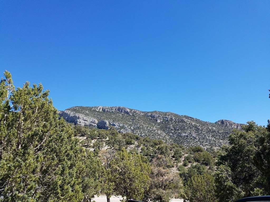 Camp Potosi Park - park    Photo 4 of 10   Address: 11480 Mount Potosi Canyon Rd, Las Vegas, NV 89124, USA   Phone: (702) 455-8200