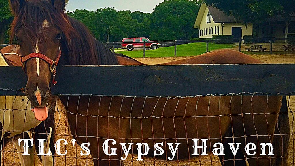 TLCs Gypsy Haven - travel agency  | Photo 1 of 4 | Address: 4325 E Keysville Rd, Lithia, FL 33547, USA | Phone: (813) 842-4236