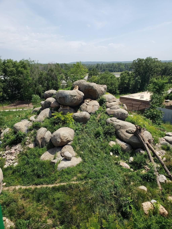 Omaha Zoo South (Main) Entrance - zoo    Photo 6 of 10   Address: 3701 S 10th St, Omaha, NE 68107, USA   Phone: (402) 733-8401