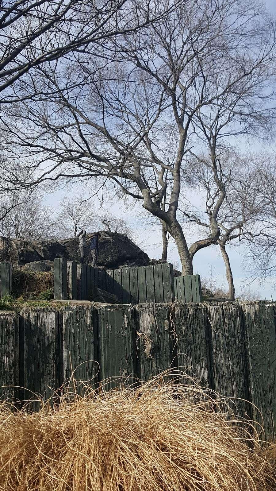 OBrien Oval - park  | Photo 10 of 10 | Address: 396 E Tremont Ave, Bronx, NY 10457, USA | Phone: (212) 639-9675