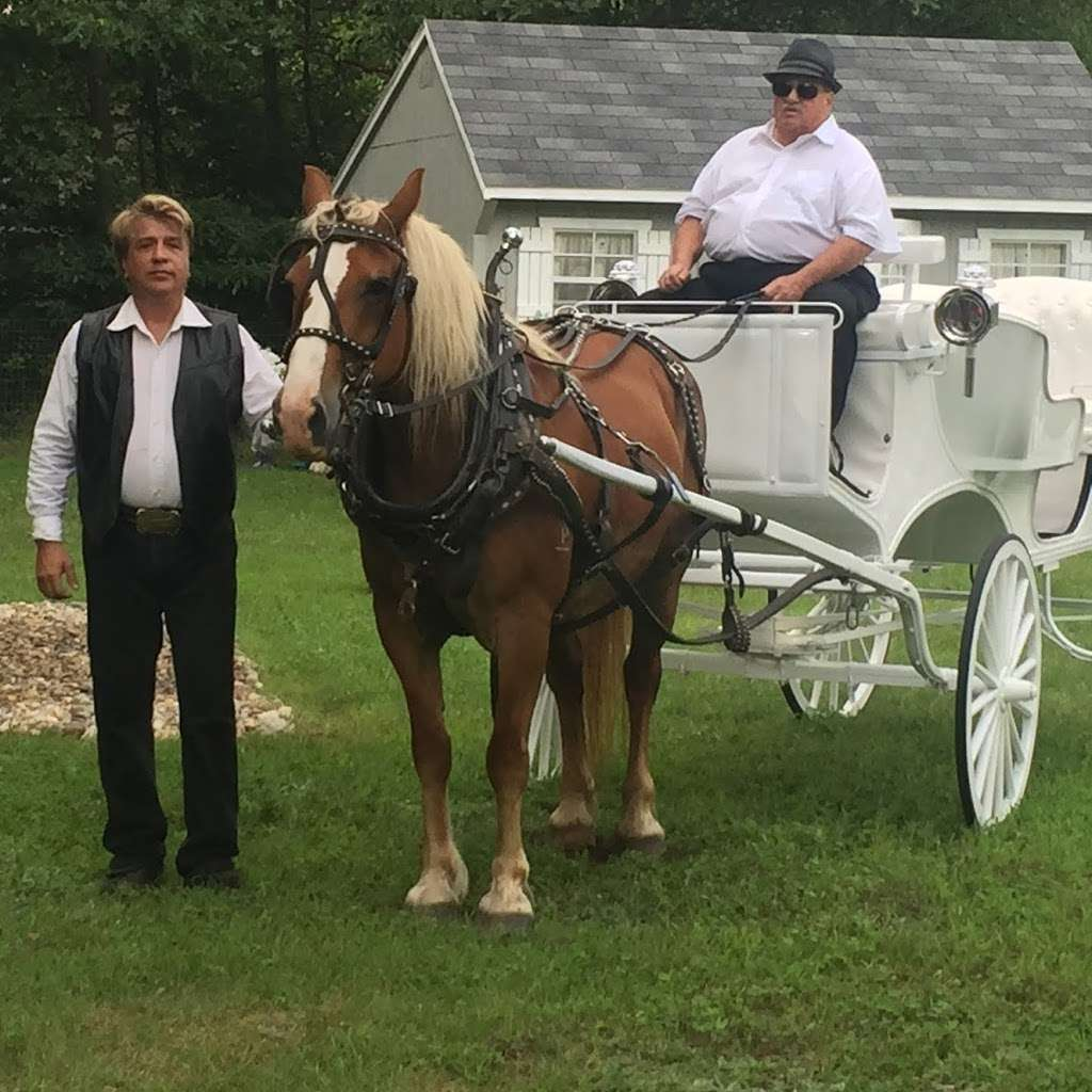 Saylors Carriage Service - travel agency  | Photo 3 of 5 | Address: 9560 E 750 N, Walkerton, IN 46574, USA | Phone: (574) 532-1840