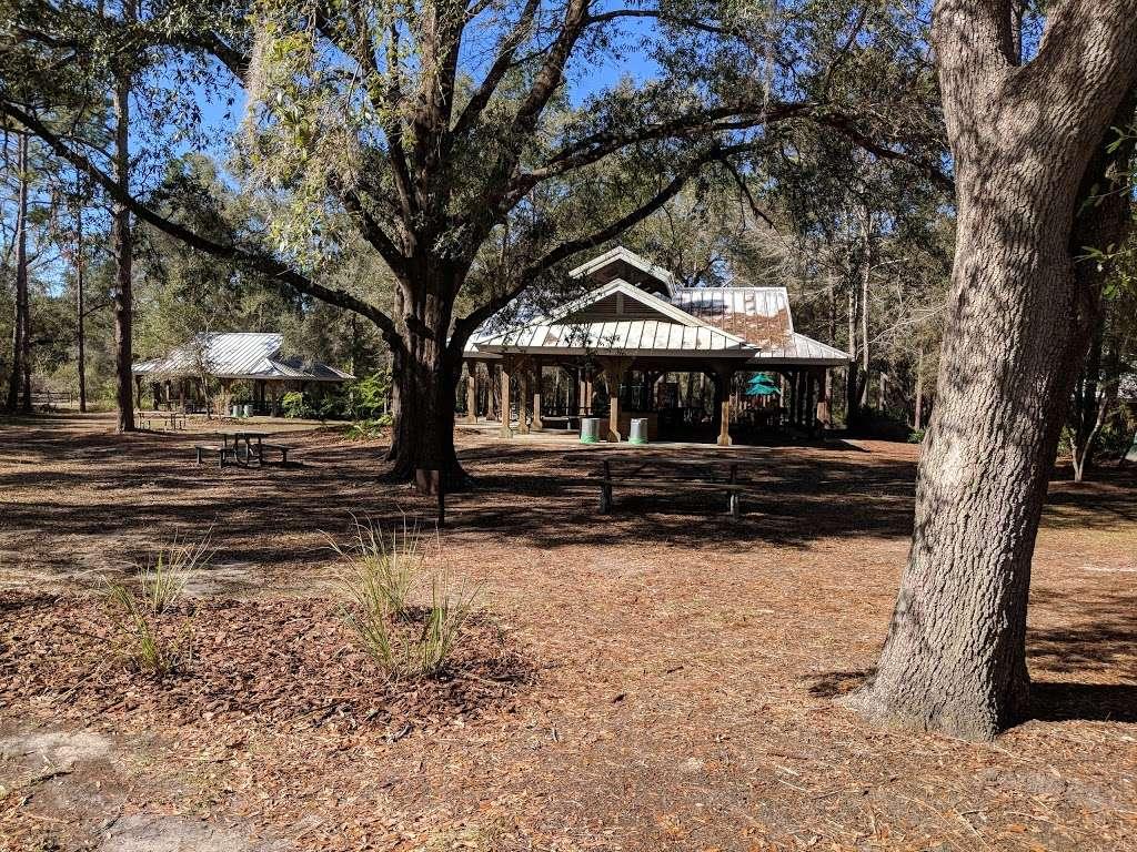 Silver River Museum & Environmental Education Center - museum  | Photo 5 of 10 | Address: 1445 Northeast 58th Avenue, Ocala, FL 34470, USA | Phone: (352) 236-5401