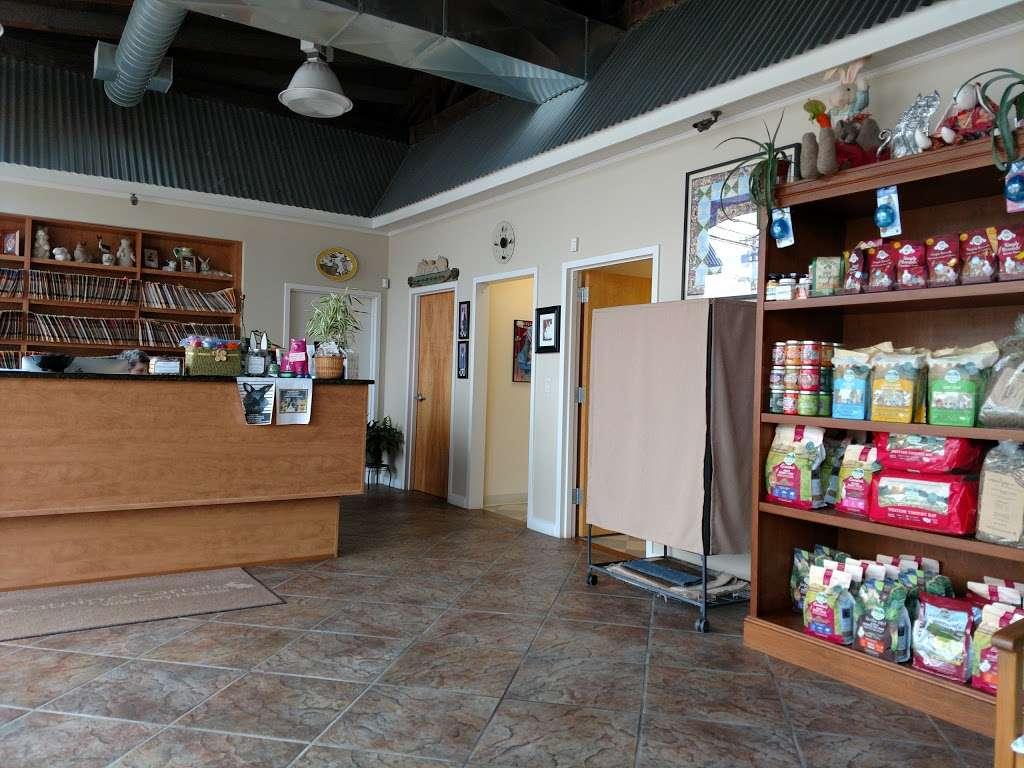 Catnip and Carrots - veterinary care  | Photo 1 of 10 | Address: 2056 Jericho Turnpike, New Hyde Park, NY 11040, USA | Phone: (516) 877-7080